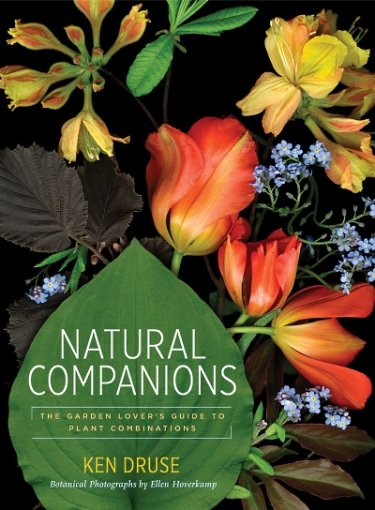 NatCompanions-pp