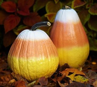 Candy-corn-gourds